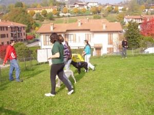 L'Allegra Cagnara - Attività Cinofile