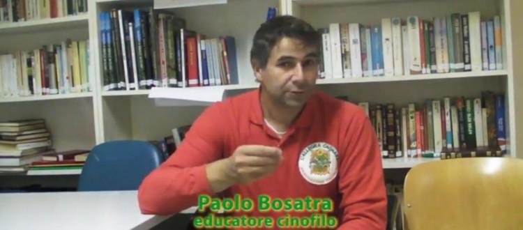 Paolo Bosatra - Dog Trainer