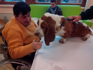 Pet Therapy - L'Allegra Cagnara