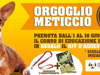 Orgoglio Meticcio
