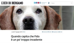 cani invadenti