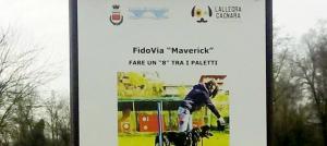 fidovia-maverick-seriate