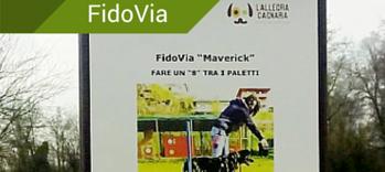 FidoVia